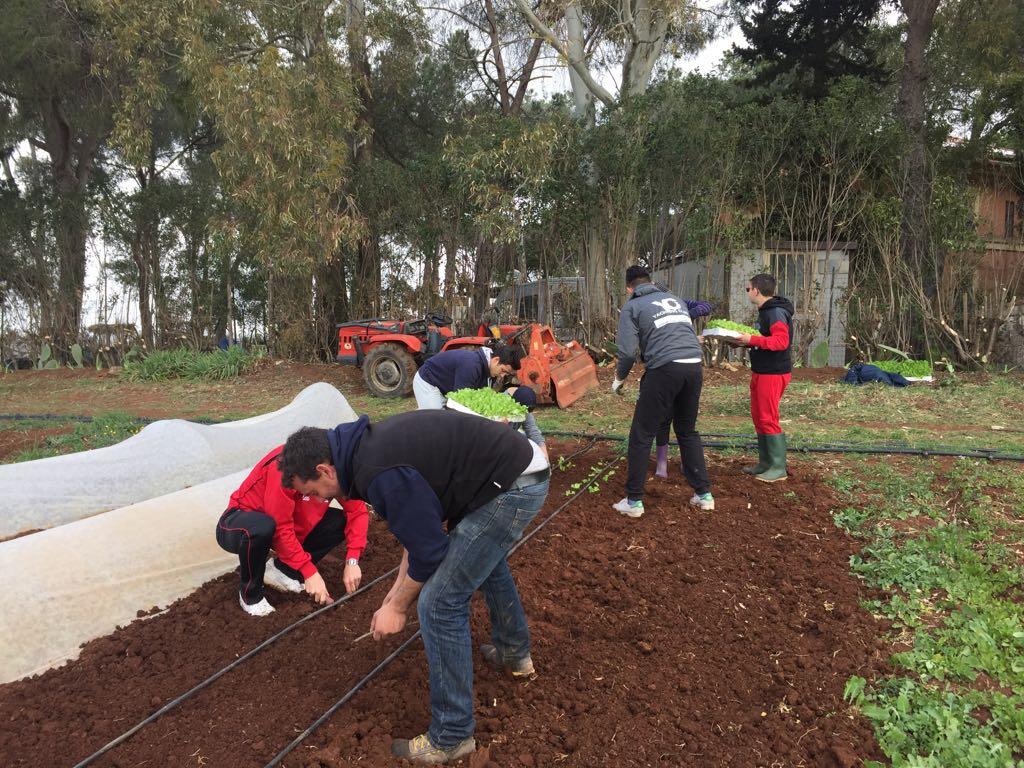 I ragazzi impegnati nella terza edizione del progetto di Agricoltura Sociale Nuovi Campi Aperti