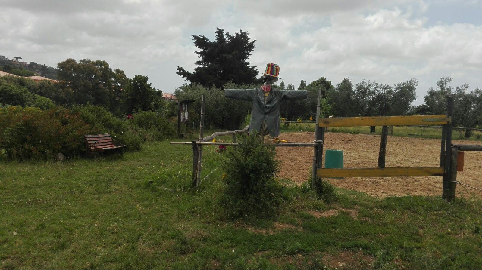 Mr Jack, lo spaventapasseri di Ciampacavallo, una delle aziende agricole che partecipano al progetto Le imprese e i giovani