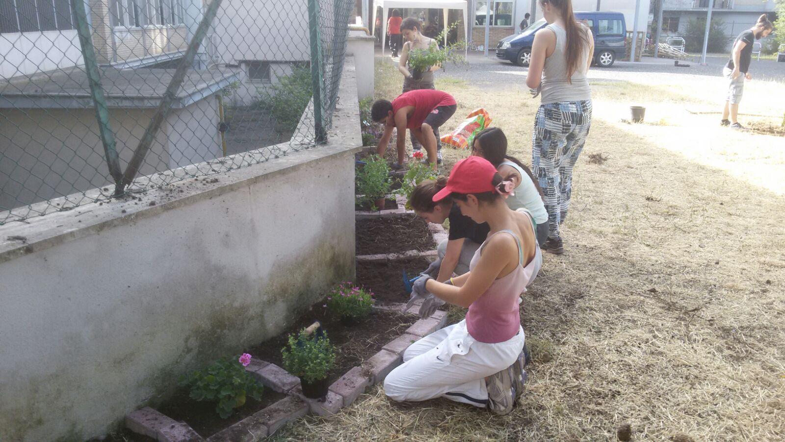 I ragazzi del Workcamp 2016 che lavorano sulle aiuole del nuovo giardino della scuola Grazia Deledda