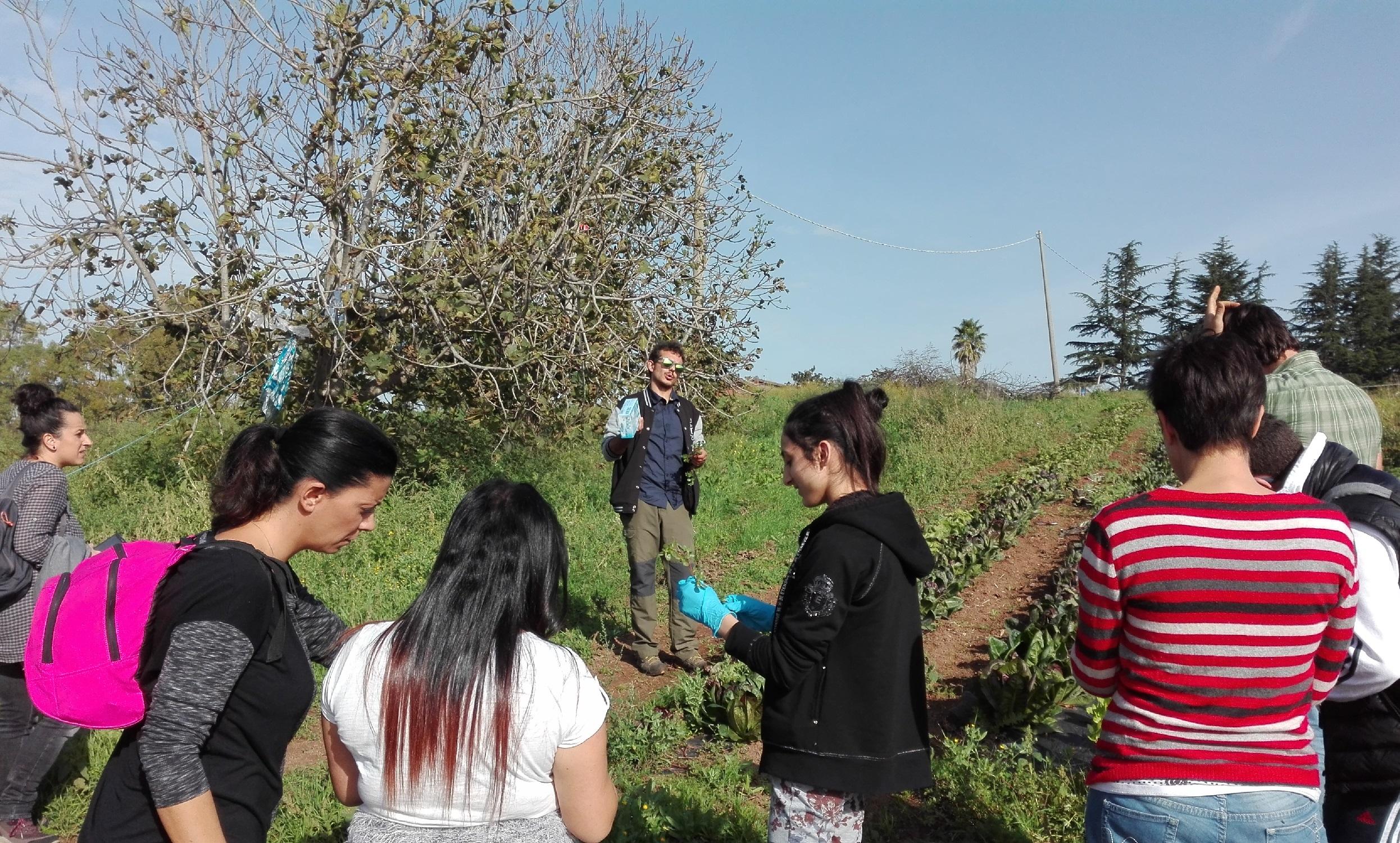 Giornate di Agricoltura Sociale - Il primo incontro tra le aziende agricole e gli adolescenti