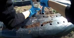 Minicam durante la prima esperienza di Agricoltura Sociale di Cristina