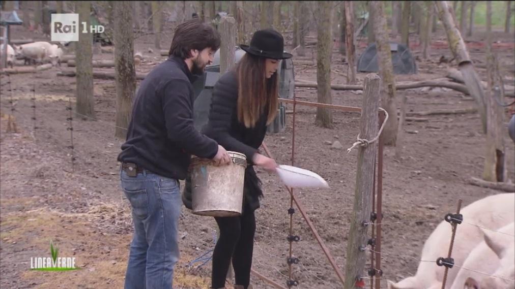 I maiali del Casale di Martignano con Daniela Ferolla di Linea Verde