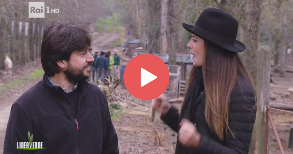 Guarda il video dell'intervista ad Andrea Zampetti a Linea Verde