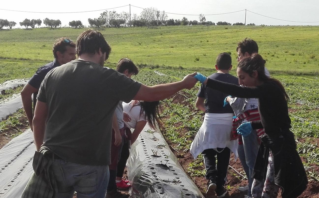 Un momento tratto dal primo giorno di Agricoltura Sociale per 3 adolescenti di Roma - I tipi di soggetti che incontrano l'agricoltura sociale