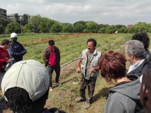 Giro dell'azienda: gli orti. Renato ci spiega come piantare e quando raccogliere gli asparagi