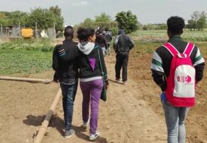 Giro dell'azienda: alle Giornate di Agricoltura sociale i ragazzi vengono accompagnati dai loro operatori di riferimento