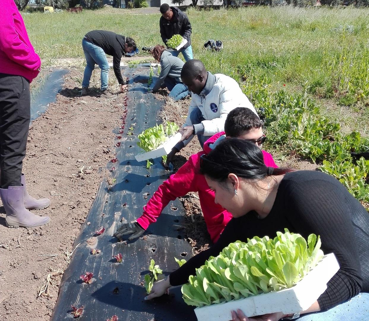 Prima Giornata di Agricoltura Sociale a La Nuova Arca