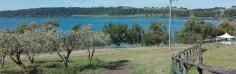 Il lago visto dal Casale di Martignano, un'azienda multifunzionale partner dei progetti di Agricoltura Sociale di Kairos