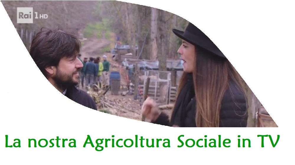 Agricoltura sociale a linea verde