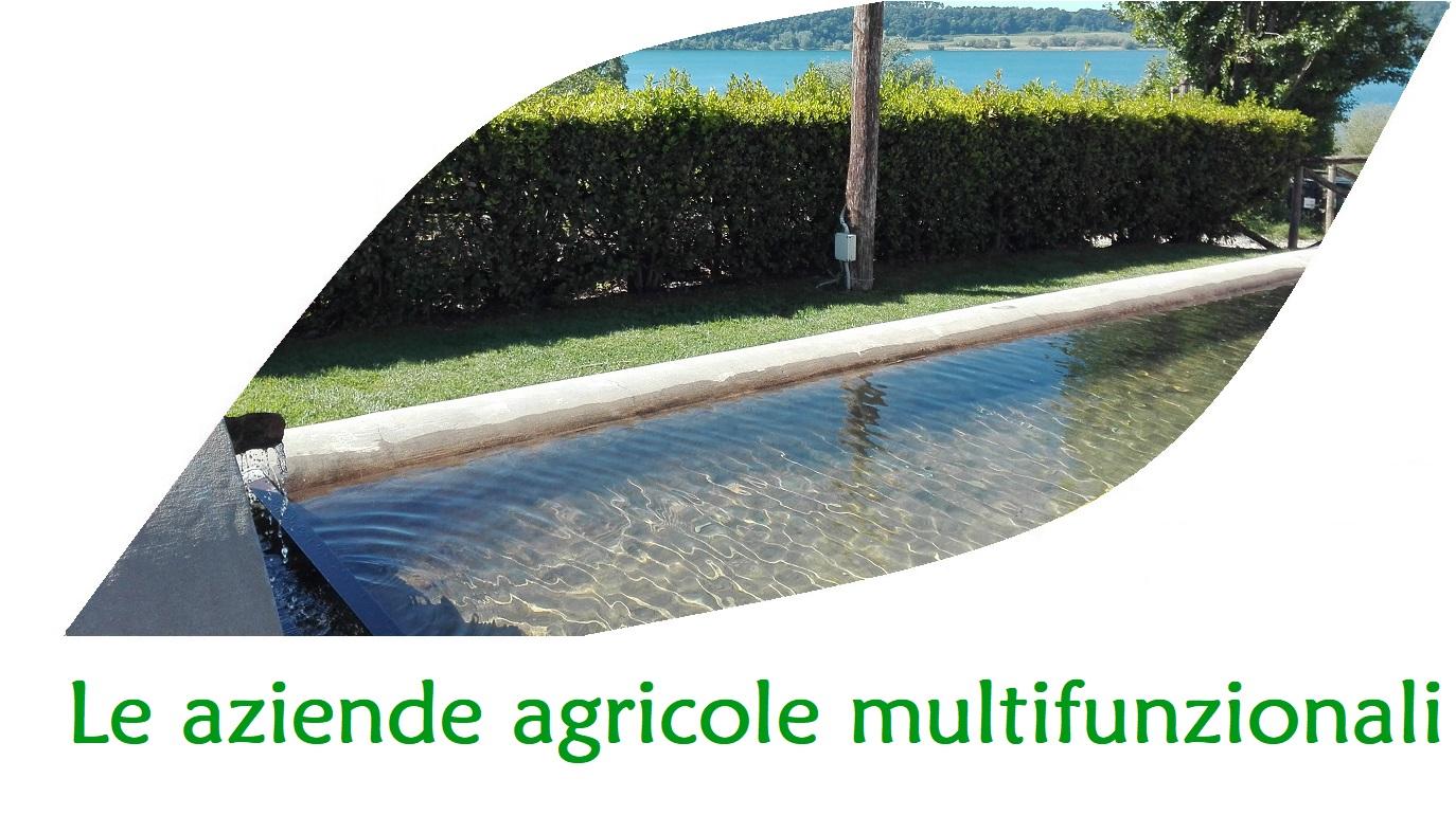 aziende agricole multifunzionali in agricoltura sociale
