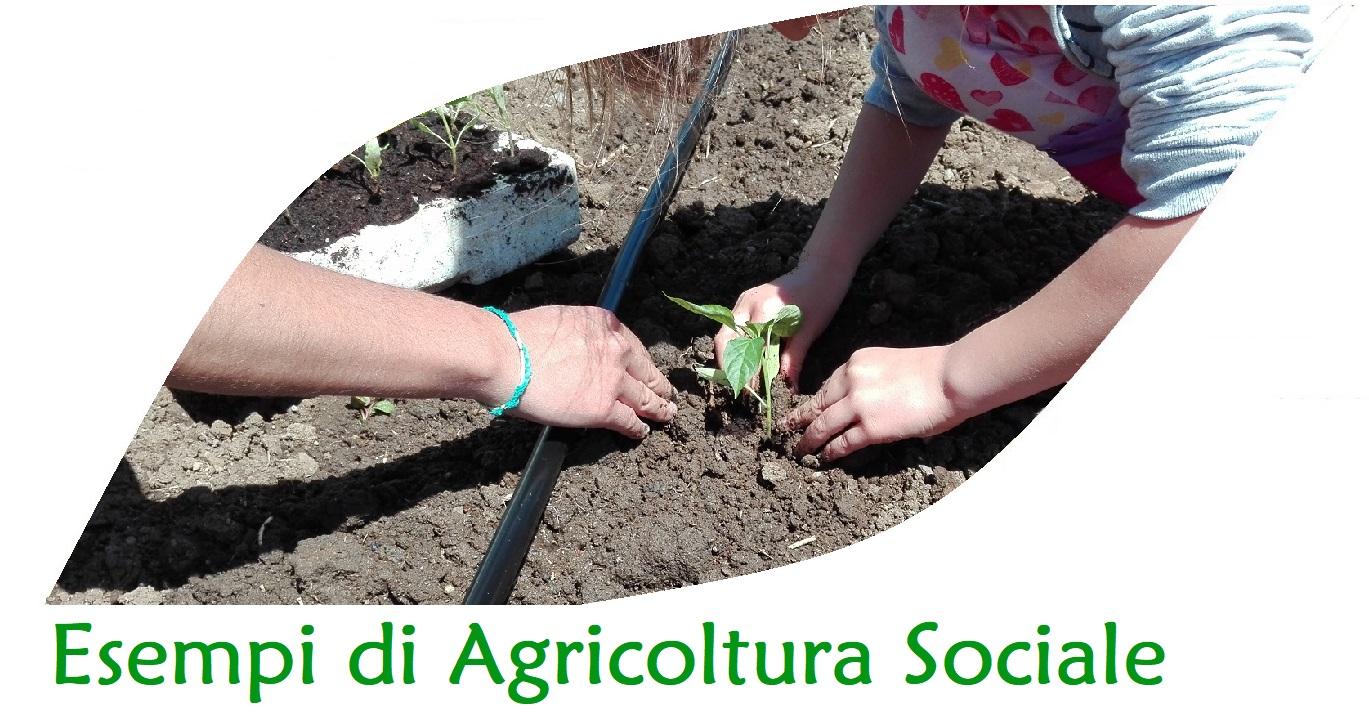 Esempi di agricoltura sociale
