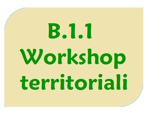 Workshop territoriali