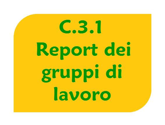 Report dei gruppi di lavoro