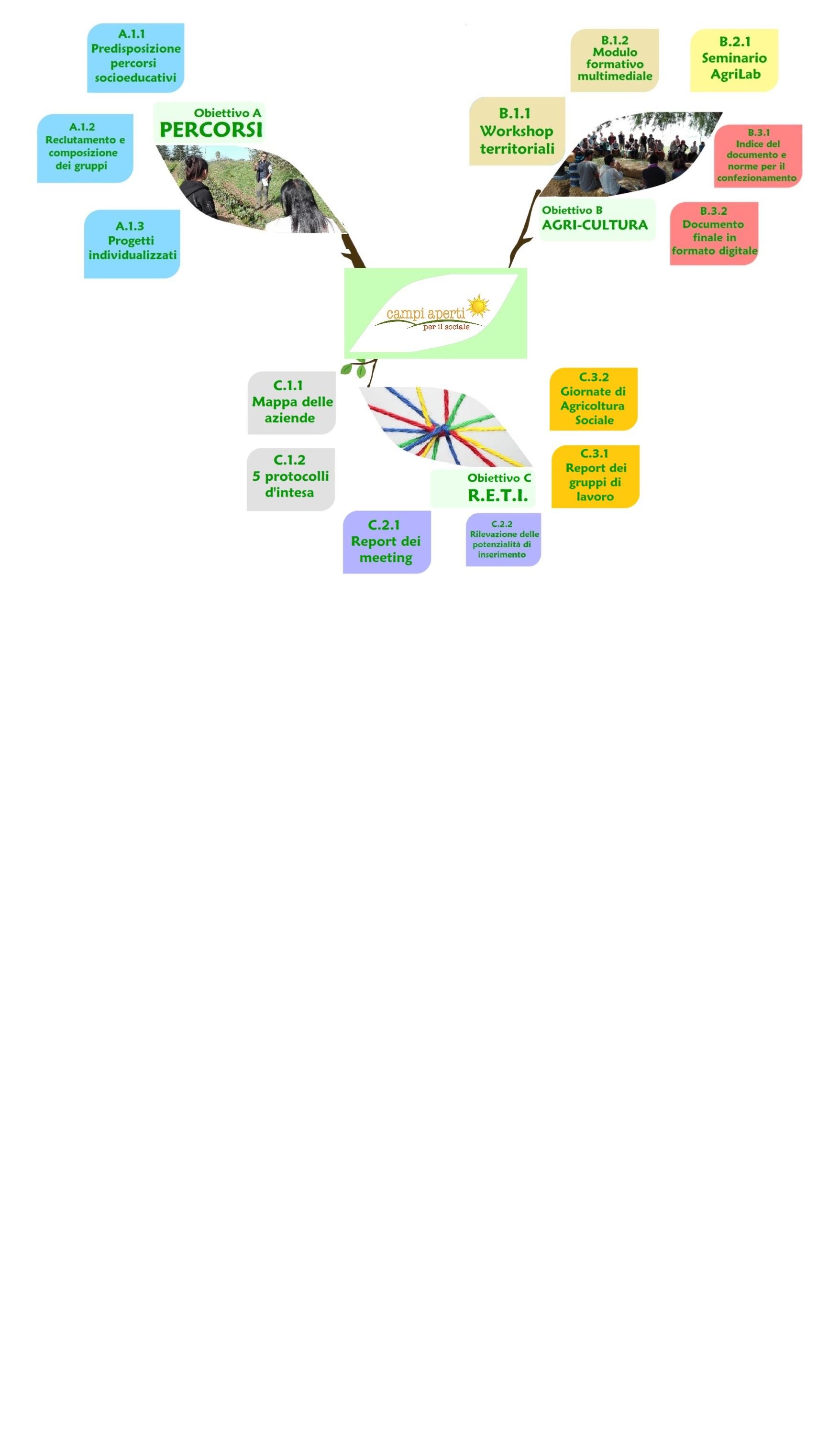 Mappa-concettuale-orizzontale-22