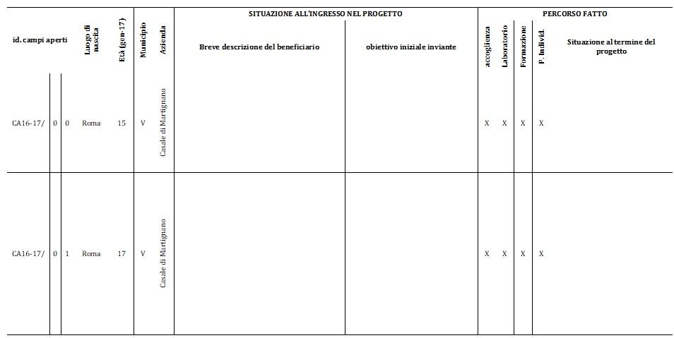 Modello di scheda per i Report dei progetti individualizzati