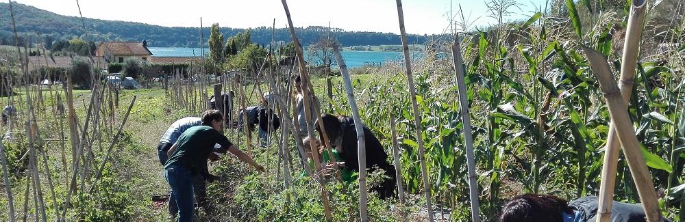 Giornate di agricoltura sociale in aziende multifunzionali: Casale di Martignano