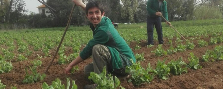 Cosa puoi fare donando il 5 per mille a Kairos? Agricoltura Sociale