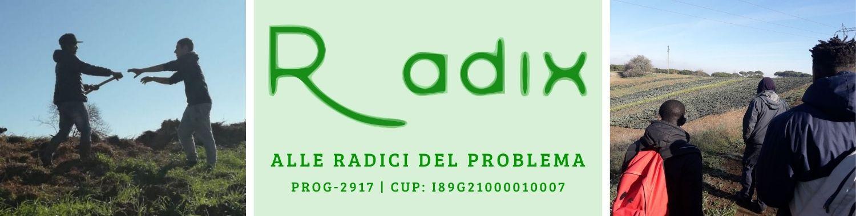 Radix - Alle radici del problema - Fami