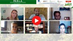 Incontri Facebook del progetto Perla